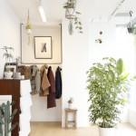 注文住宅 ブログ ディスプレイの基本